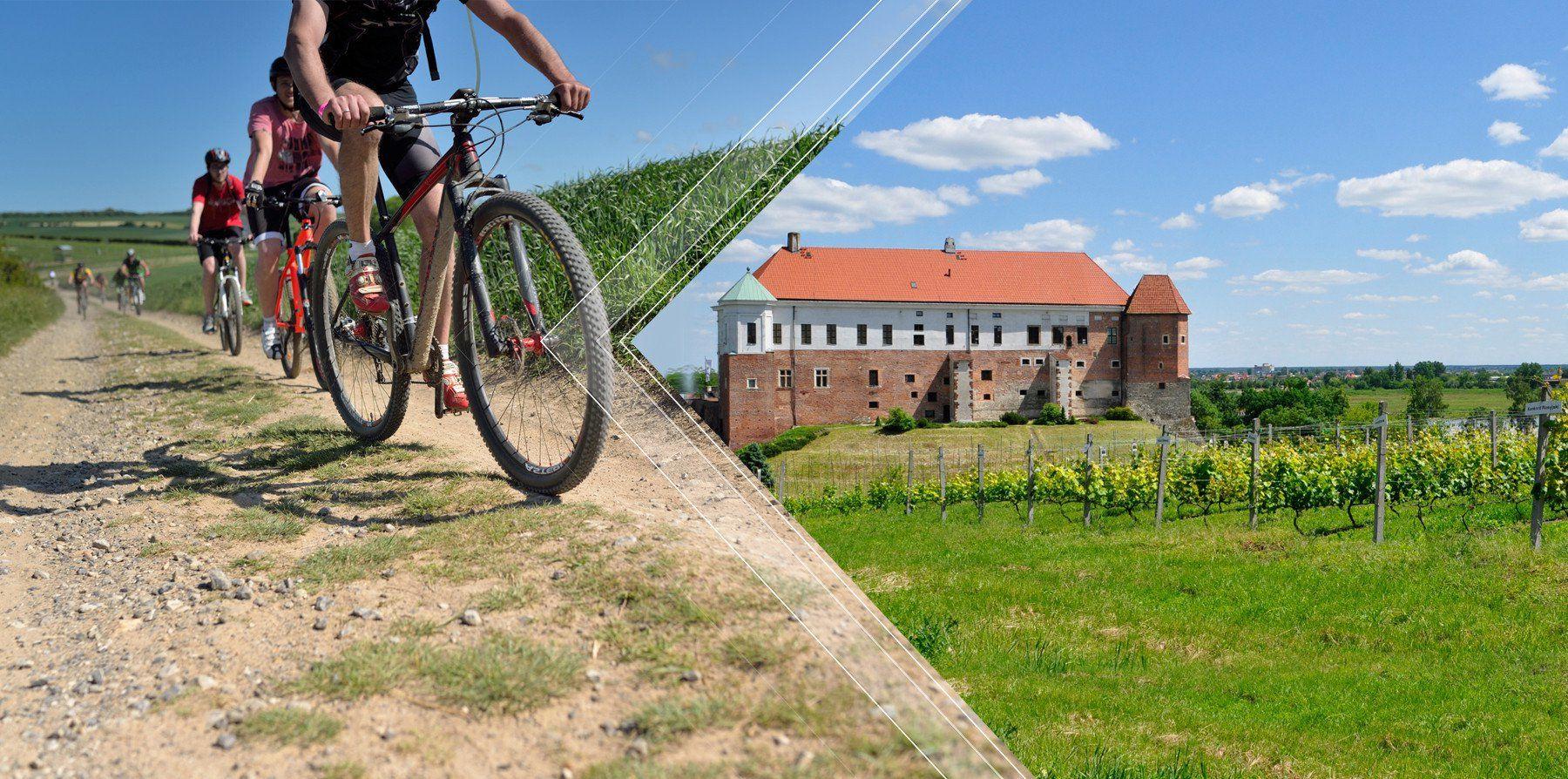 Miejski Ośrodek Sportu i Rekreacji Sandomierz