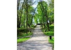Zdjęcia parku